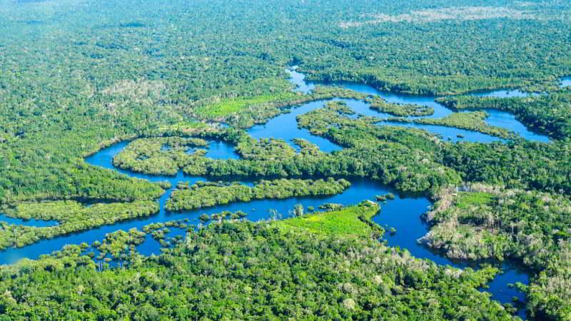Amazon Jungle Trip